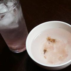 さくら茶 ICE・HOT ¥450(税抜)